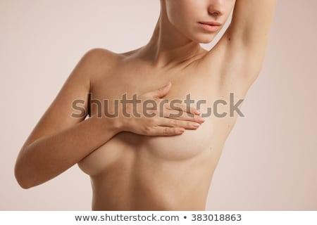 Ręce piersi kobiet ciało mapie świata kobieta Zdjęcia stock © michaklootwijk