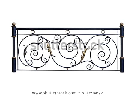 Vintage iron fence stock photo © odes