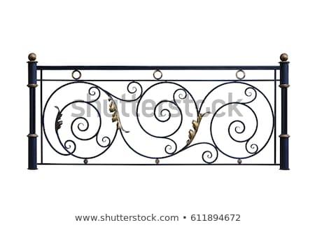 Vintage iron fence Stock photo © odes