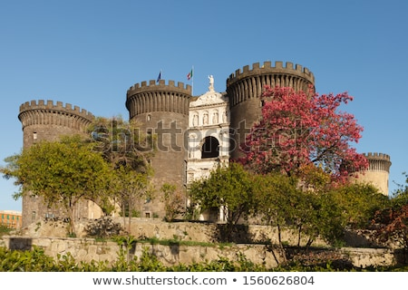 castello · Italia · view · medievale · sole · Napoli - foto d'archivio © sailorr