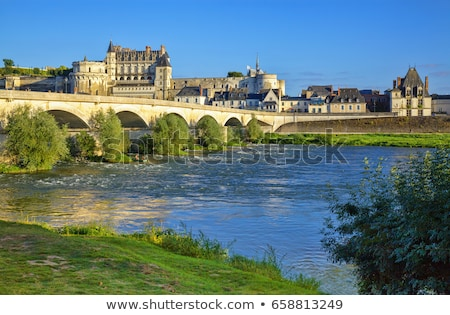 Amboise castle .Valley of the river Loire. France Stock photo © wjarek