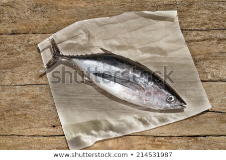 Tonhal szépia rusztikus csendélet hal háttér Stock fotó © marimorena