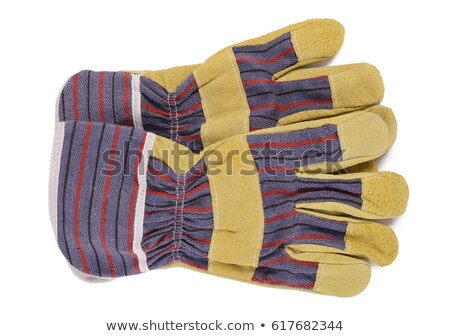 Gardening Tools And Cotton Gloves  Stock photo © dezign56