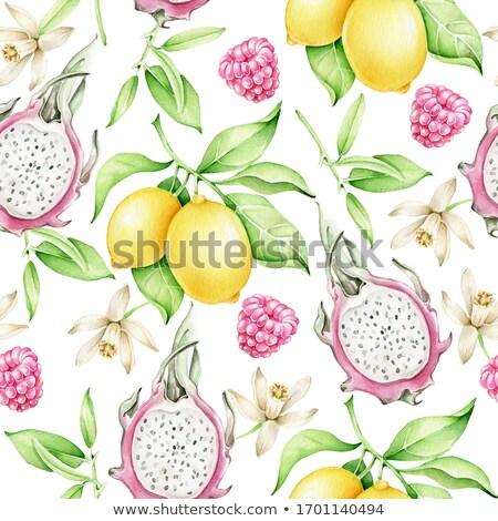 シームレス フルーツ パターン 抽象的な 自然 葉 ストックフォト © elenapro