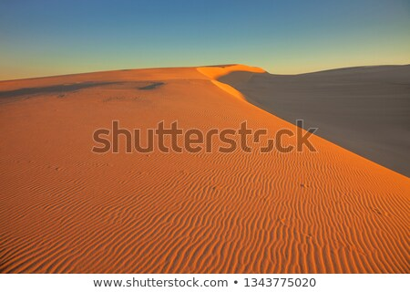 Dark Point Sand Dunes Australia Stock photo © lovleah