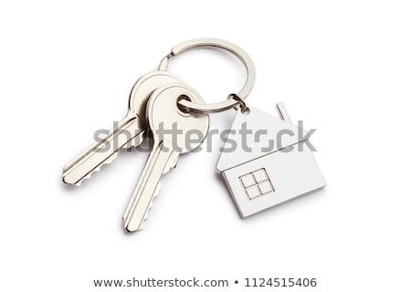 Claves aislado blanco fondo seguridad Foto stock © haraldmuc