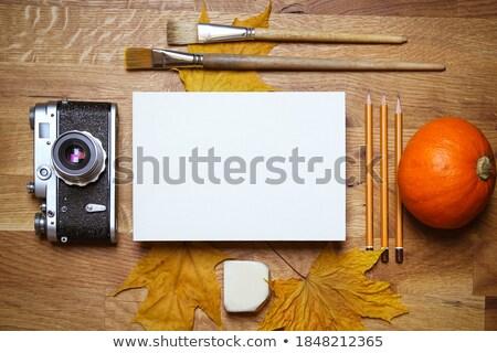 automne · caméra · cadre · table · en · bois · lumière · beauté - photo stock © massonforstock
