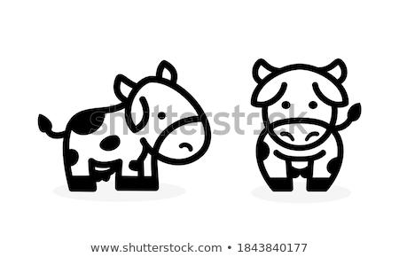 Tehén arc érzelem ikon illusztráció felirat Stock fotó © kiddaikiddee