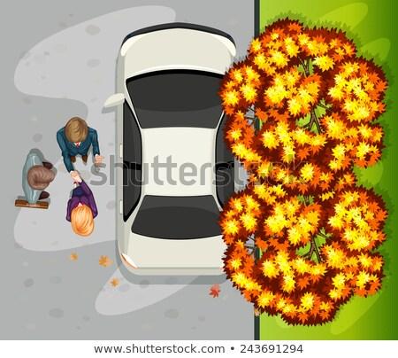 автомобиль иллюстрация белый спортивных черный зеркало Сток-фото © bluering