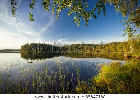 été · scène · randonnée · Finlande · ciel - photo stock © Perszing1982