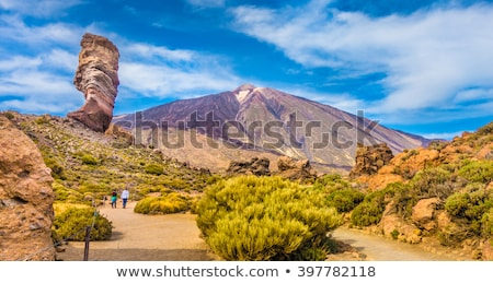La Gomera island landscape in sunny day, Canary islands, Spain. Stock photo © tuulijumala