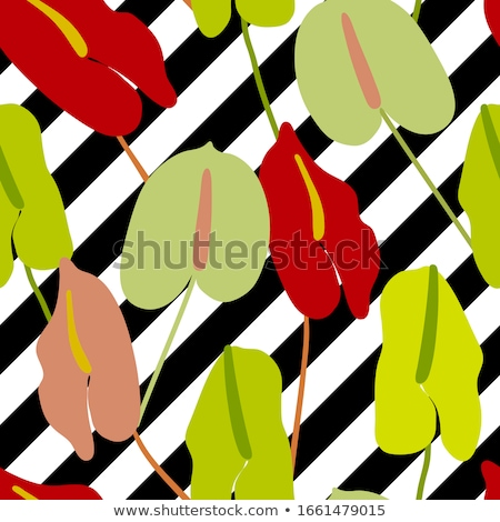 Vector Seamless Black and White Hand Drawn ZigZag Diagonal Stripes Pattern Stock photo © CreatorsClub