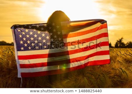 Amerikai növekedés USA ötlet társadalombiztosítás Amerika Stock fotó © Lightsource