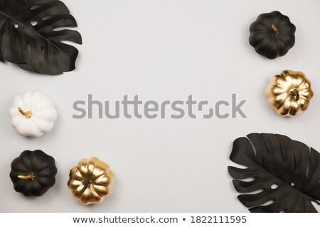Golden and black glitter shoes Stock photo © gsermek