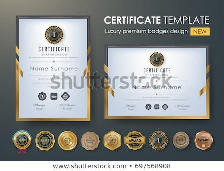 Arany prémium diploma bizonyítvány terv siker Stock fotó © SArts