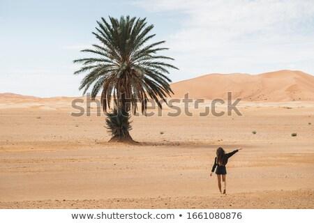 女性 砂漠 風景 旅行 2 ストックフォト © artfotodima