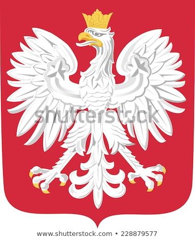 Águia · branco · símbolo · Polônia · pássaro · azul - foto stock © sqback
