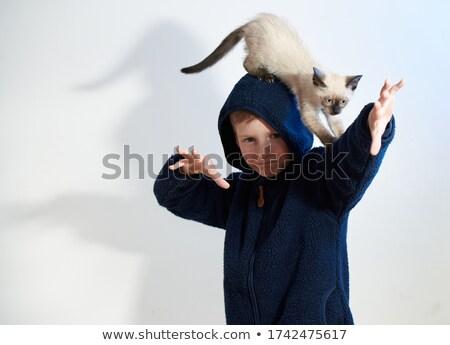 glimlachend · kat · fantastisch · huisdier · ongebruikelijk · dier - stockfoto © rastudio