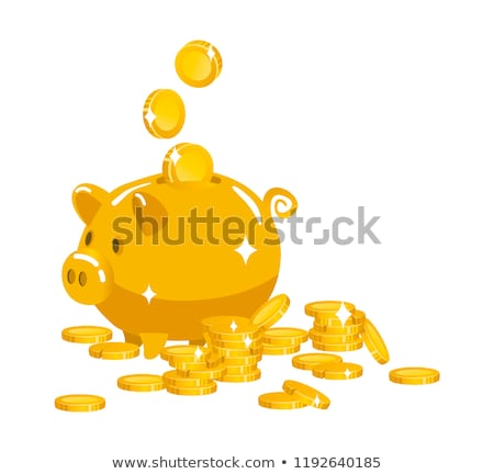Pig piggy bank and coin. Financial illustration. Accumulation of Stock photo © popaukropa
