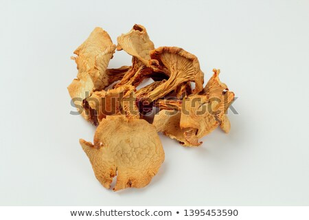 dried chanterelles mushrooms stock photo © zhekos