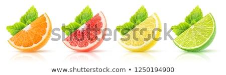 vers · ruw · mint · bladeren · leven · gezonde - stockfoto © dash