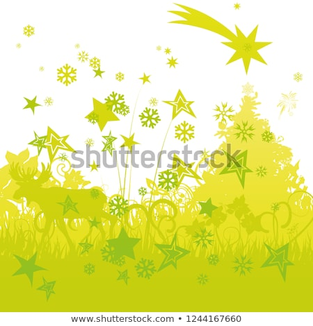 Stars and ice flowers on the cold grass Stock photo © Ustofre9