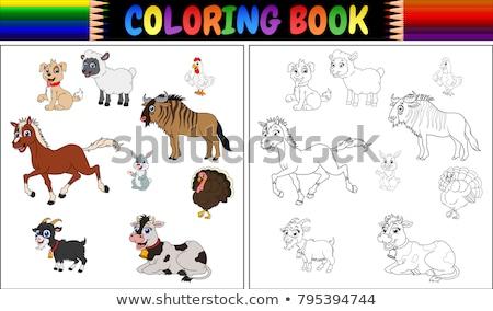 家畜 グループ 色 図書 漫画 ストックフォト © izakowski