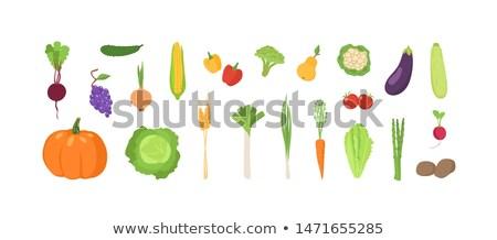 Gezonde voeding tarwe groenten wortelen vector patroon Stockfoto © robuart