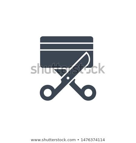 Credit Card related vector glyph icon. Stock photo © smoki