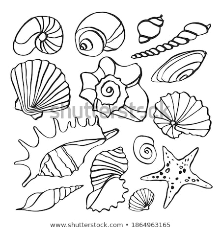 Black Line Art Mussel Cartoon on a White Background Stock photo © cidepix