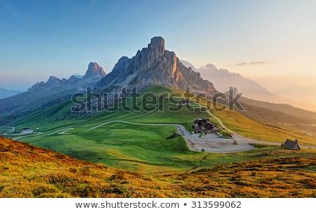Tájkép hegy völgy Alpok kilátás gyönyörű Stock fotó © lichtmeister