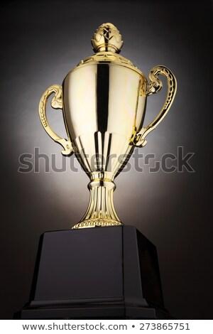 Gunning winnend kampioenschap trofee beker sport Stockfoto © JanPietruszka