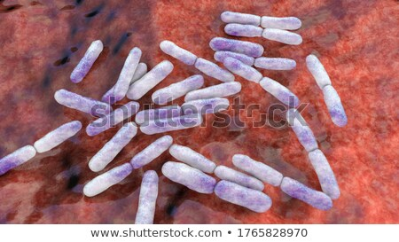 Bifidobacterium Nonmotile Bacteria Probiotics Stock photo © robuart