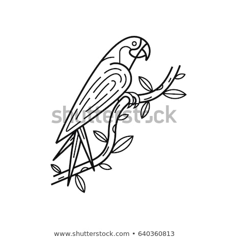 Exotic feather outline simple black icon Stock photo © evgeny89