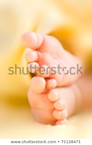 Infant toes in a row stock photo © Ansonstock