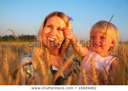Mother with  child sit in wheaten field with cornflower Stock photo © Paha_L