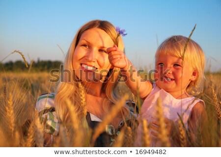 матери ребенка сидеть области василек стороны Сток-фото © Paha_L