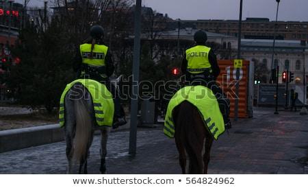 Oslo Noorwegen werk baan paarden outdoor Stockfoto © phbcz