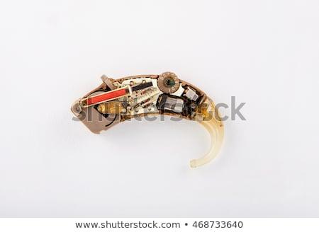 Hallókészülék kalapács analóg áramkör Stock fotó © csontstock