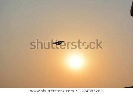 Single medium size aircraft silhouette stock photo © lkeskinen