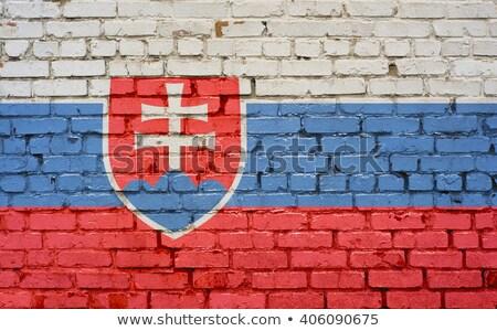 Vlag Slowakije muur geschilderd grunge textuur Stockfoto © creisinger
