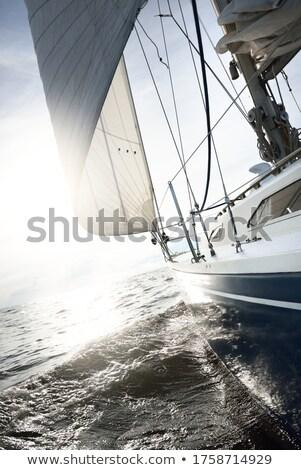 navire · illustration · isolé · blanche · été · bleu - photo stock © samsem