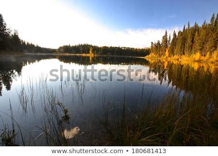 Saskatchewan lago Canadá Foto stock © pictureguy