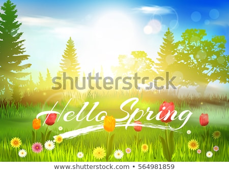 spring grass landscape illustration  Stock photo © creative_stock
