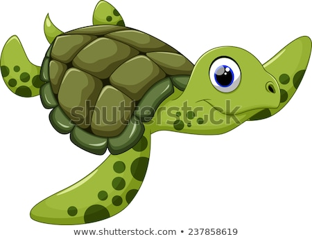 schildpad · geïsoleerd · witte · vector · gelukkig - stockfoto © dagadu
