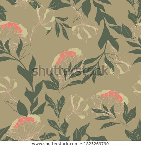 трава · мох · бесшовный · текстуры · зеленый · весны - Сток-фото © pzaxe