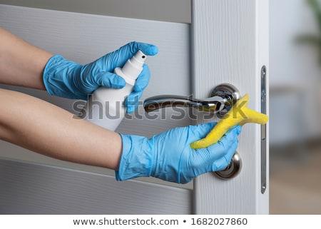 lavori · di · casa · ritratto · nice · casalinga · blu · robe - foto d'archivio © pressmaster