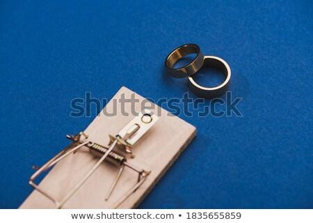 Mouse armadilha dourado anel madeira morte Foto stock © carenas1
