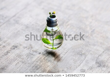 Water inside light bulb Stock photo © wavebreak_media