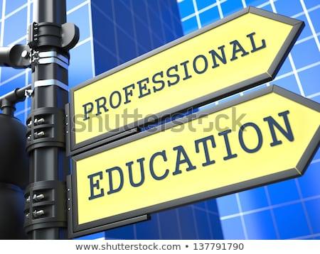 profesyonel · eğitim · mavi · Internet · çalışmak - stok fotoğraf © tashatuvango